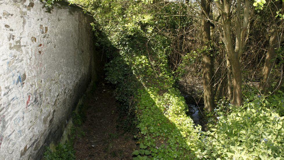Cambian un trazado del Camino Primitivo y arrancan los mojones.El concejal Roberto Sánchez Ramos, Rivi