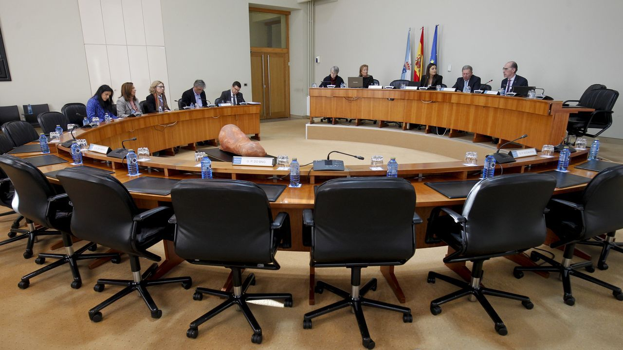 «Le debo la vida al cribado».El conselleiro Vázquez Almuíña, primero por la derecha, en la semivacía comisión de investigación sobre la sanidad, con los puestos vacíos de la oposición, que rechaza participar