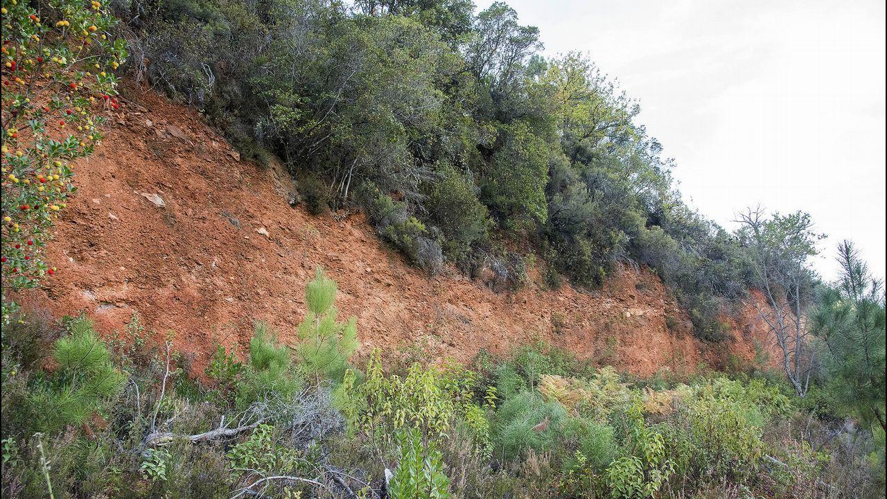 Frente de explotación de la mina de Piñeira, en las cercanías de Figueiredo
