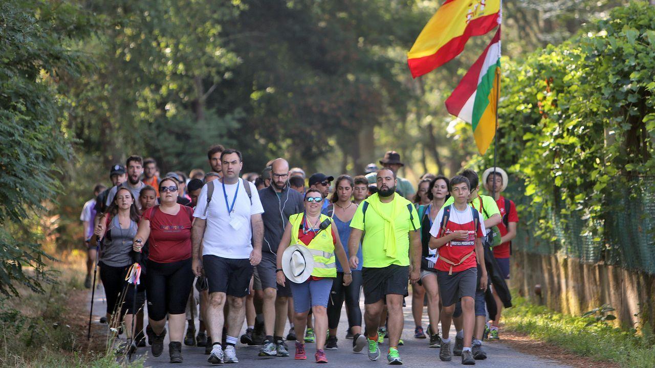 Mil peregrinos hacia Santiago.