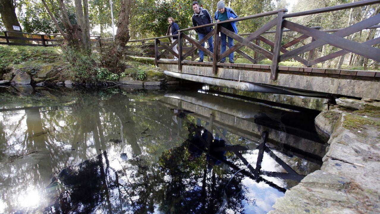 Una tromba de agua provoca pequeñas inundaciones en Vilagarcía.Mapa europeo realizado con el riesgo de deslizamientos