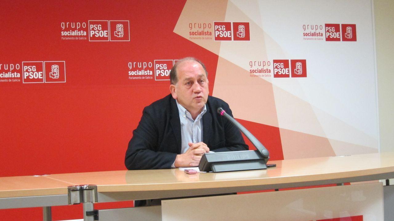 Xaquín Fernández Leiceaga, portavoz do grupo parlamentario socialista