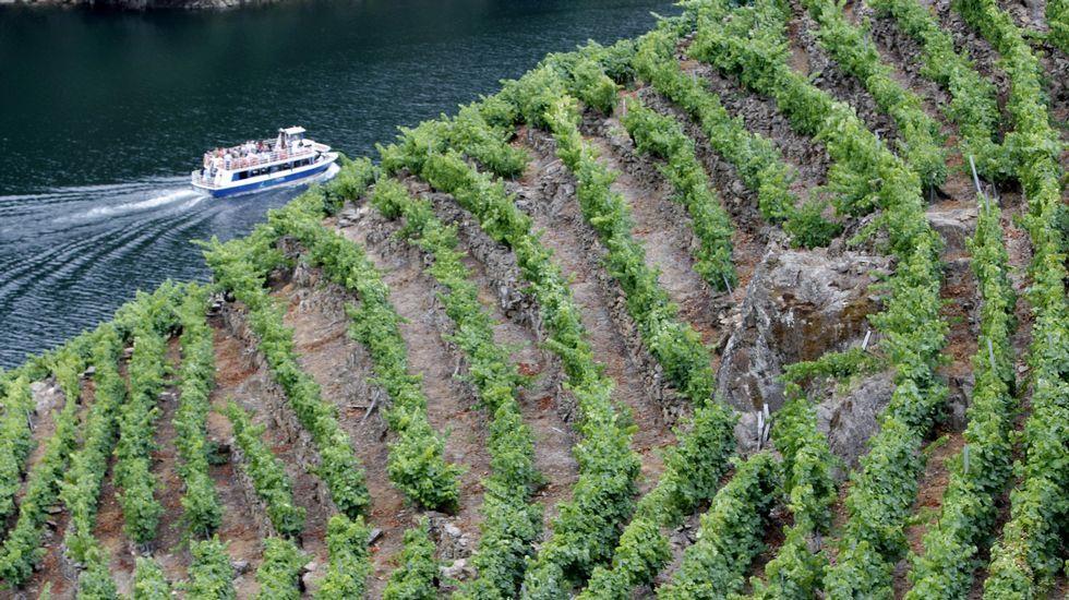 Los mejores momentos de la 38 Feira do Viño de Amandi, en imágenes.El alcalde de Sober y el máximo responsable de la Sgae en Galicia, ayer durante la presentación del acuerdo