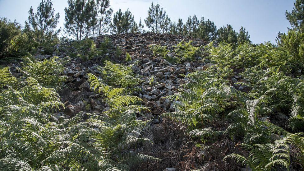 Vistas de la mina