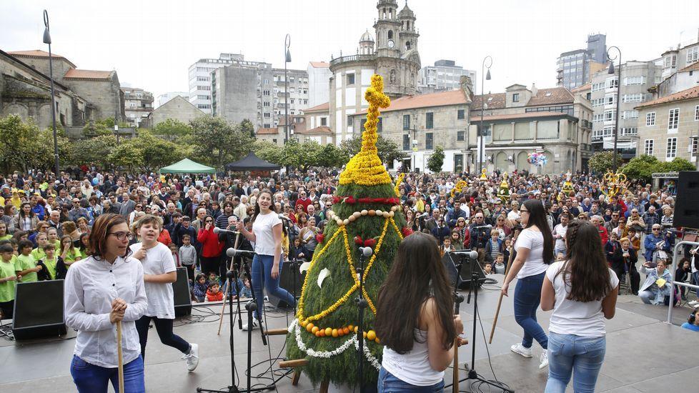 Pontevedra mantiene viva la tradición de los Maios.
