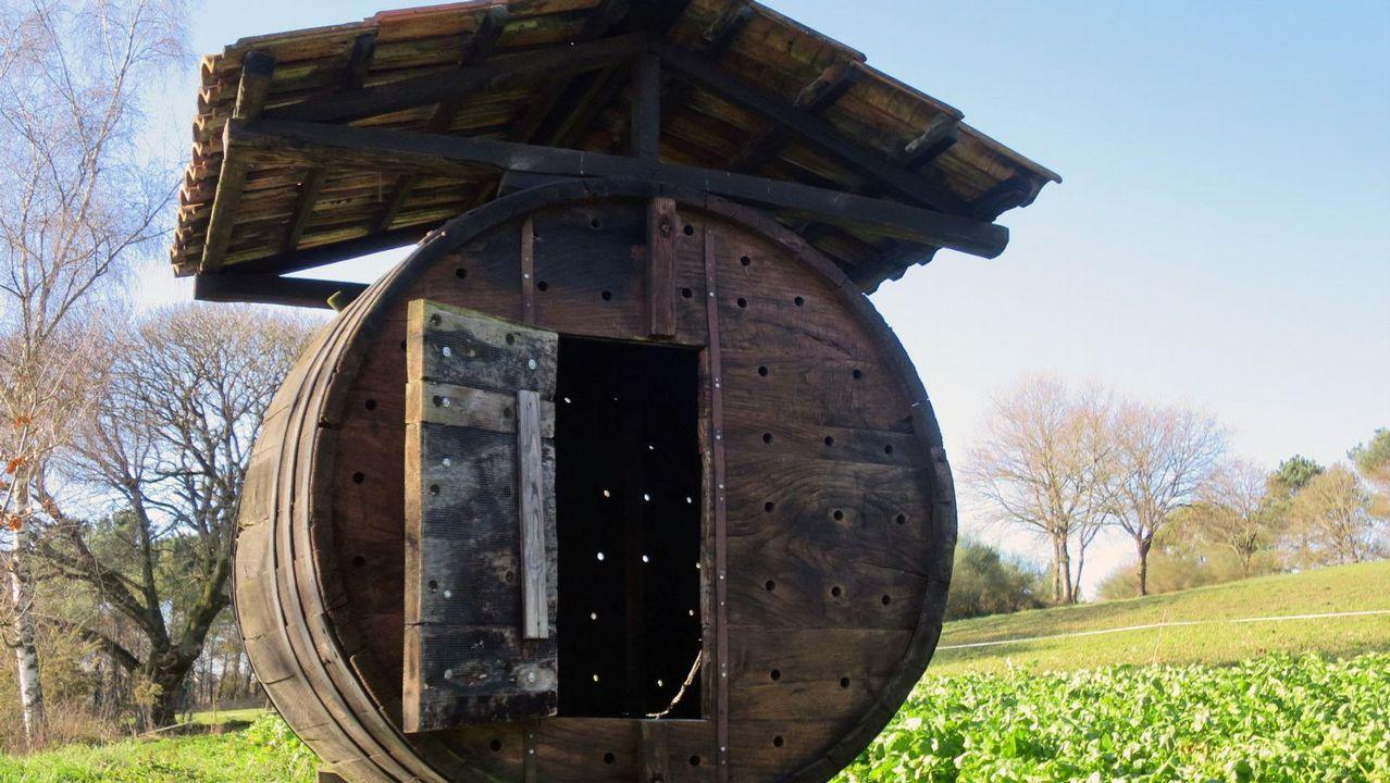 Un tonel transformado en hórreo en el lugar de Milleirós, en Carballedo