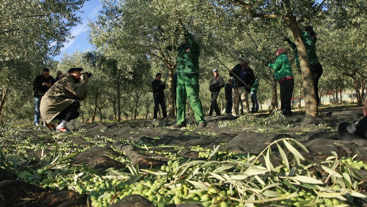 Malestar en Castro de Rei por el asentamiento de una familia italiana en el párking de autocaravanas.Presentación de las guías de Turismo de Asturias