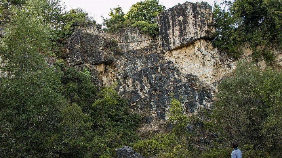 .En la antigua cantera de Buxán apareció en 1961 el único fósil de mamut conocido en Galicia