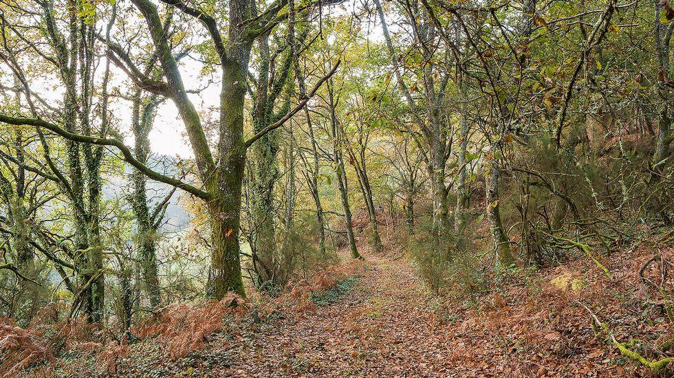 Un tramo de la ruta en el lugar conocido como Ribeira de Fonteíña