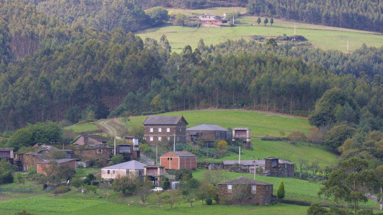 Movilización en Santiago para luchar contra el abandono del rural