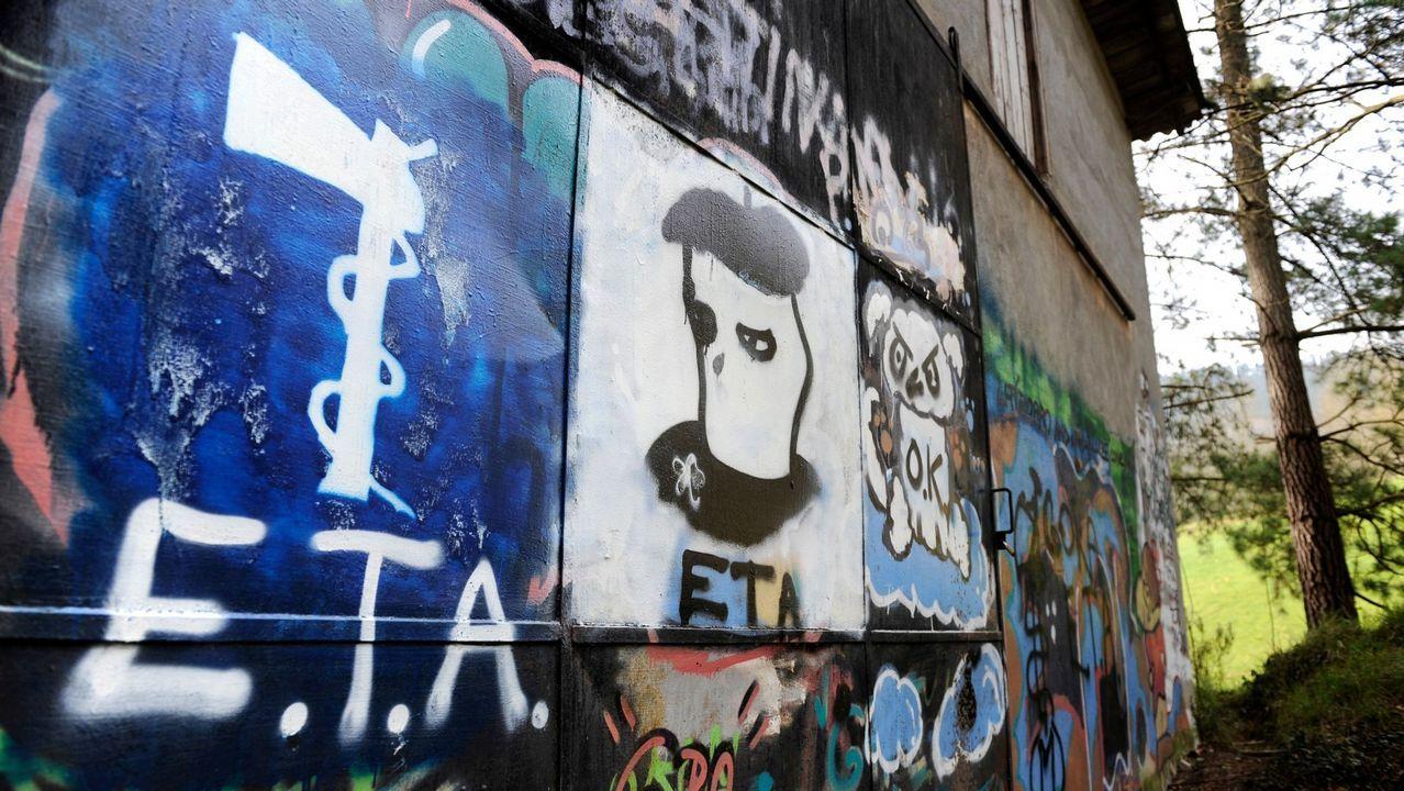 Tensión en las calles de Alsasua por el acto conjunto de Ciudadanos, PP y Vox.Arnaldo Otegi, en una imagen de archivo