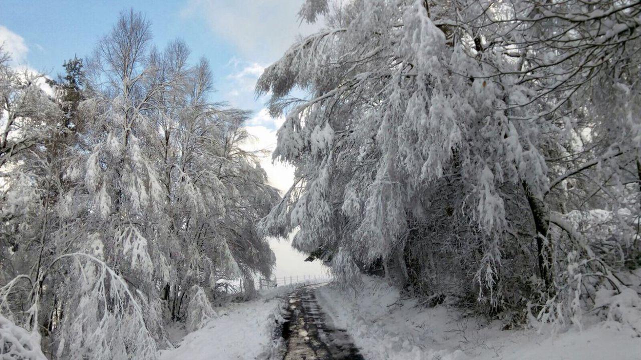 Paisaje helado y nevada del Huerna a la altura del embalse de Barrios de Luna.Continúa nevando en Los Oscos