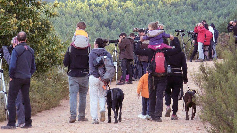 Imagen de la guía del Ministerio de Medio Ambiente sobre el turismo de observación y naturaleza, de J. Talegón