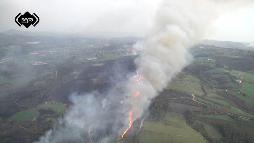 Uno de los incendios acaecidos en Asturias en diciembre 2015