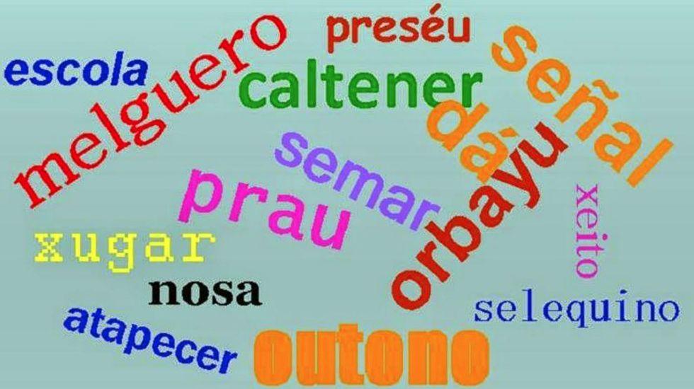 Concurso escolar de palabras en asturiano organizado por la Consejería de Educación