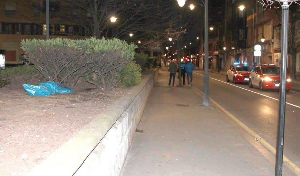 Una bolsa con los restos del jabalí, en la avenida Schulz