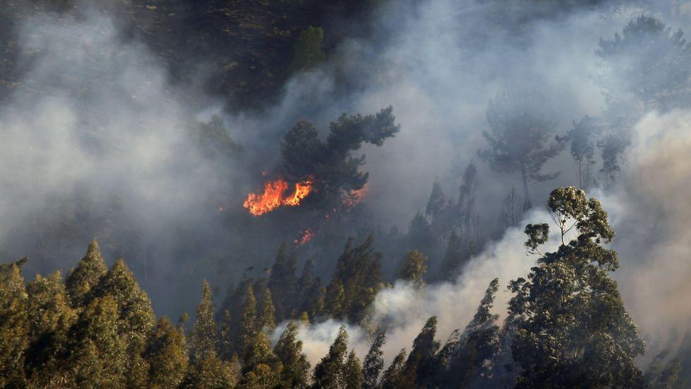 Uno de los incendios forestales registrado en el concejo asturiano de Llanes y en cuya extinción están trabajando los Bomberos del Servicio de Emergencias del Principado (SEPA).