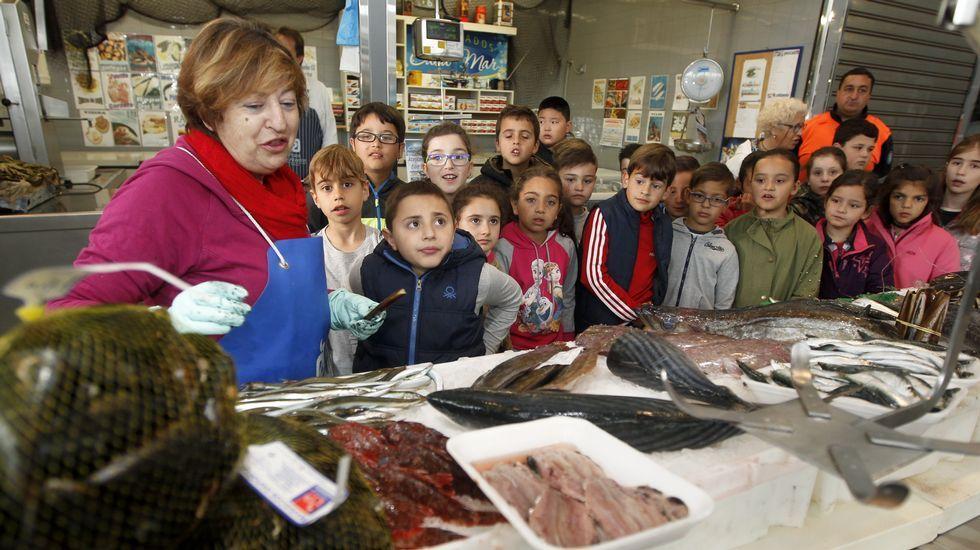 Los niños del Arealonga visitan la plaza de abastos