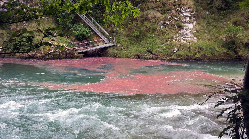 Vertidos de combustible al río Cares, en Niserias, como consecuencia del accidente de un cambión cisterna