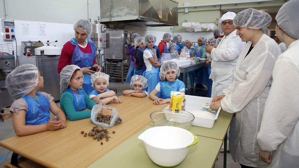 Menú de galletas de trevos nas aulas ribeirenses