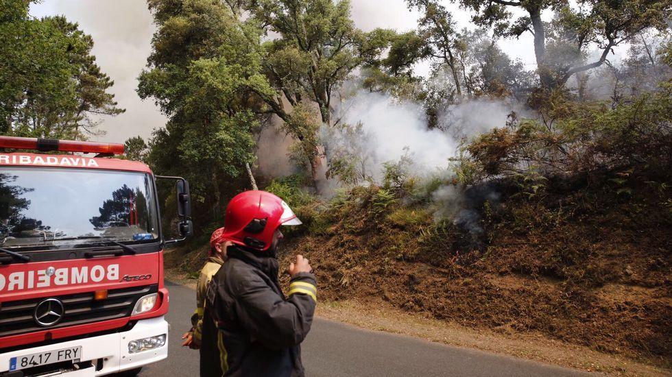 Incendió forestal en Quins