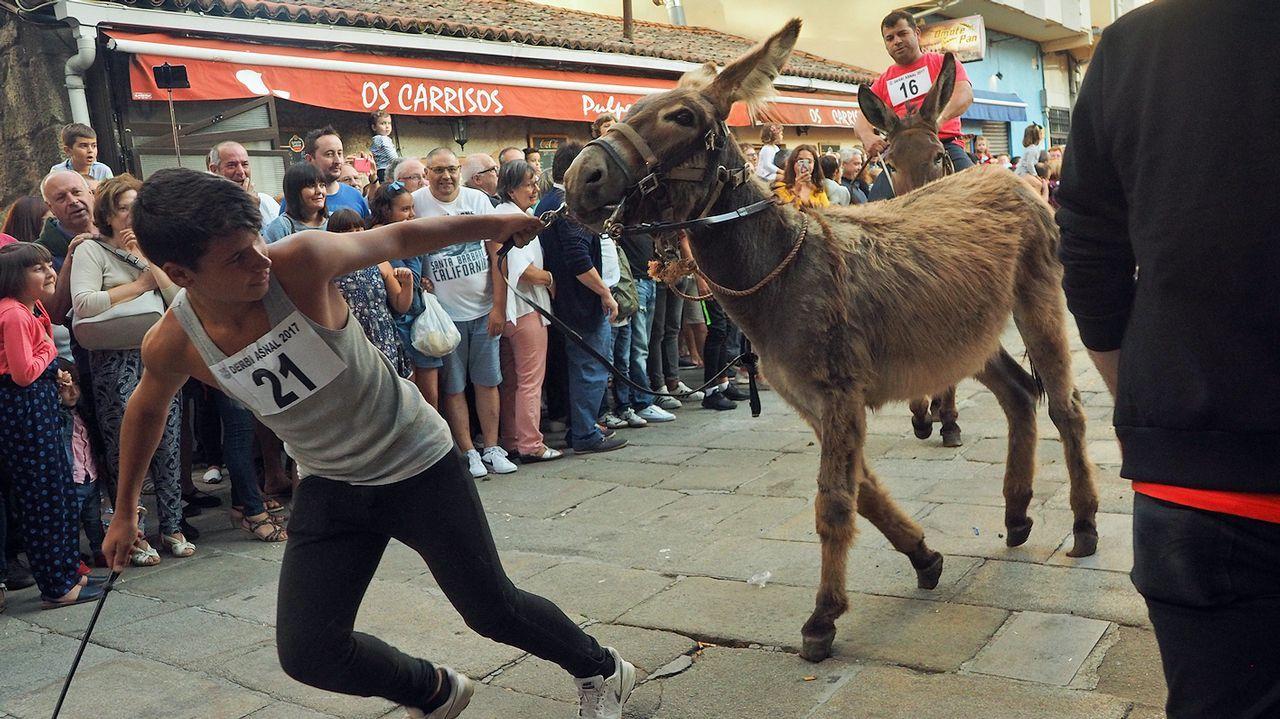 repitió éxito con la carrera de burros y su Asnot