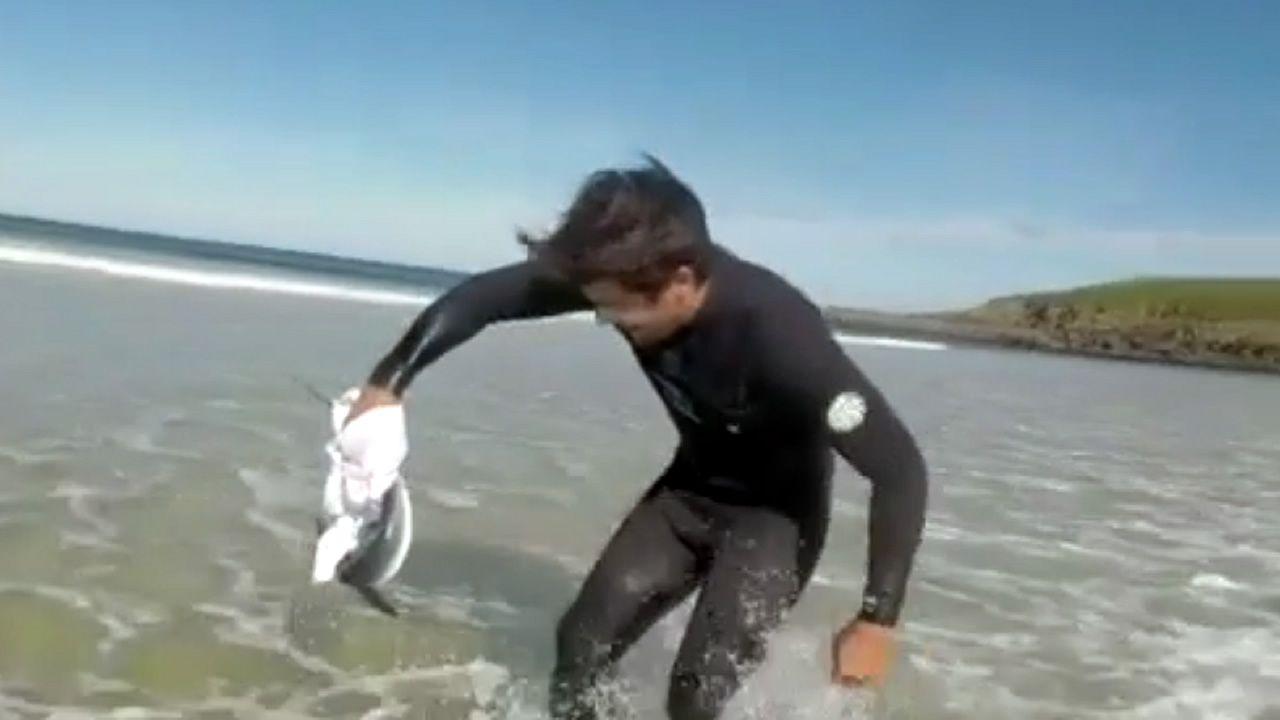 Surfistas de Porto do Son devolvieron al mar a un tiburón
