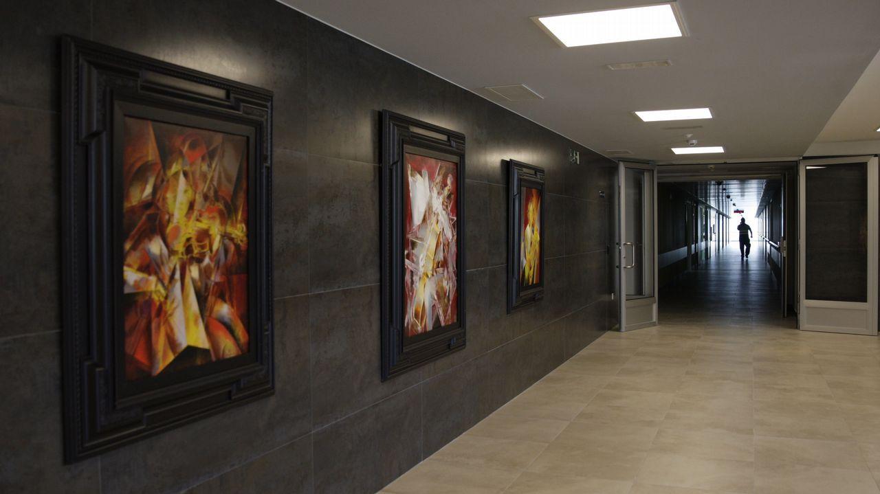 Los cuadros de xaime quessada en el nuevo centro de hospitalización