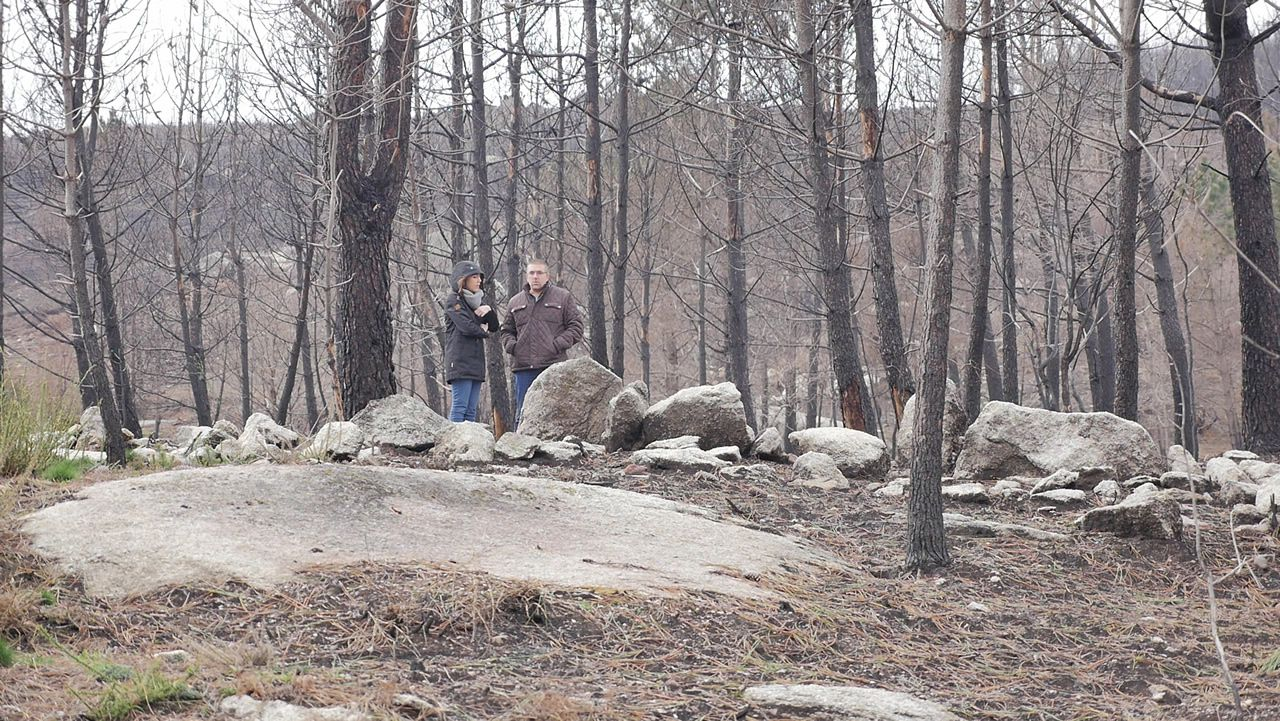 Seis meses después de las llamas: «Seguimos sentíndonos sós»