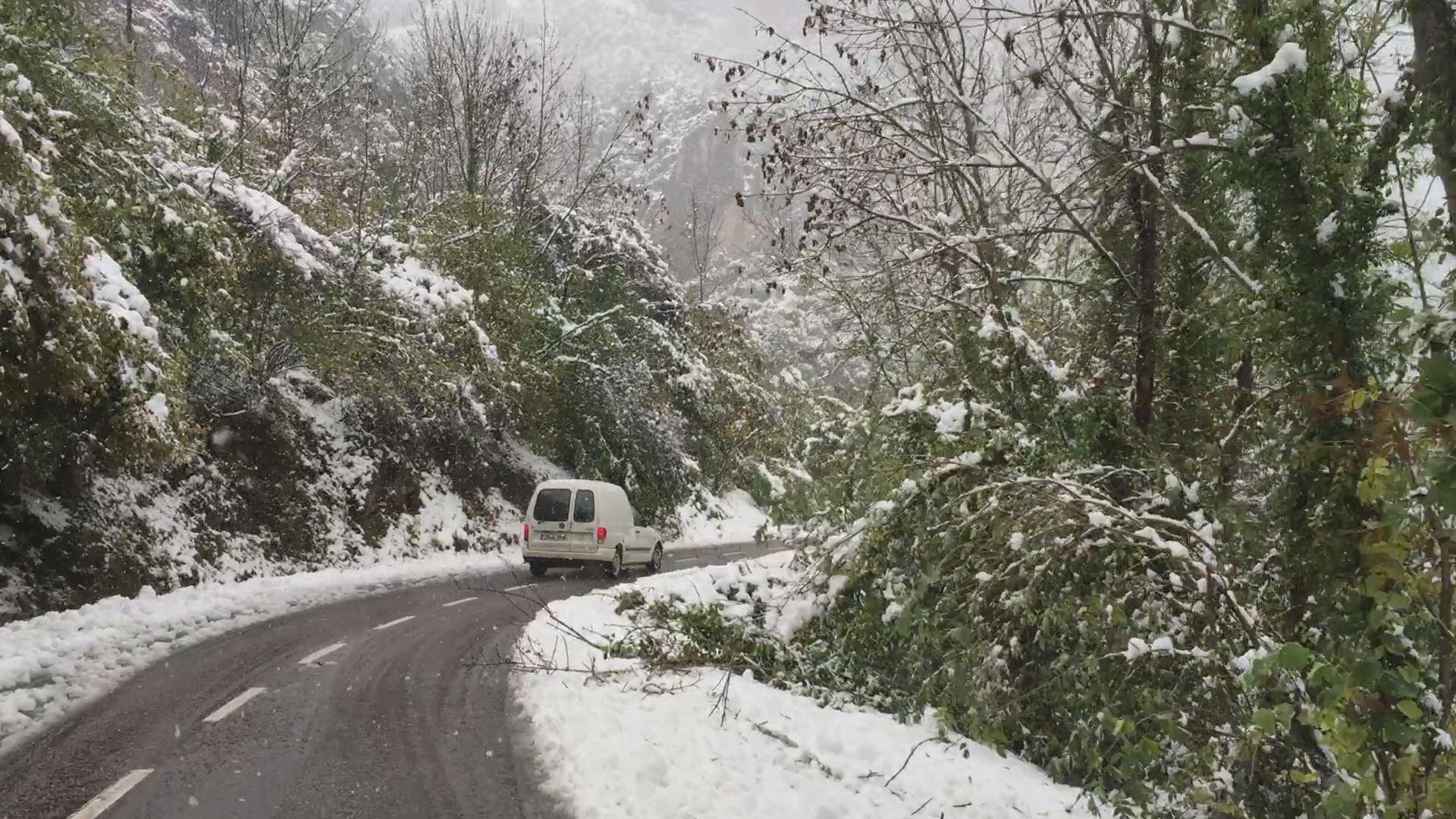 La nieve complica el tráfico en 11 puertos asturianos