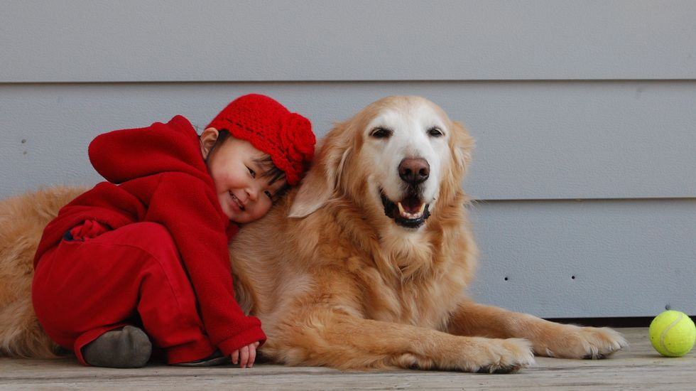 .Los perros entienden algunas palabras humanas, según un estudio