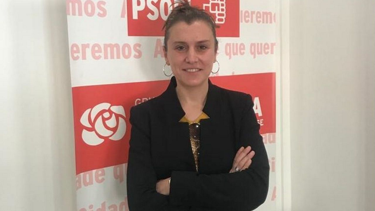 El portavoz socialista, Fernández Leiceaga, en su intervención