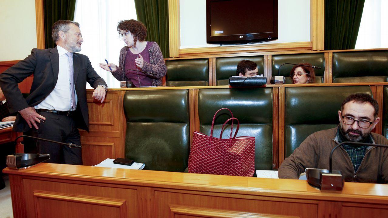 Un diputado del BNG rompe la foto del Rey al intervenir en la tribuna del Parlamento