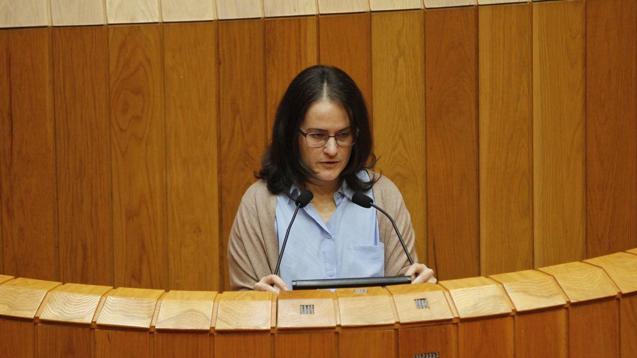 Paula Vázquez Verao (Parlamento de Galicia). Procede de Cerna, partido al que los críticos culpan de buena parte de los problemas de En Marea. Es uno de los principales apoyos con los que cuenta Luís Villares