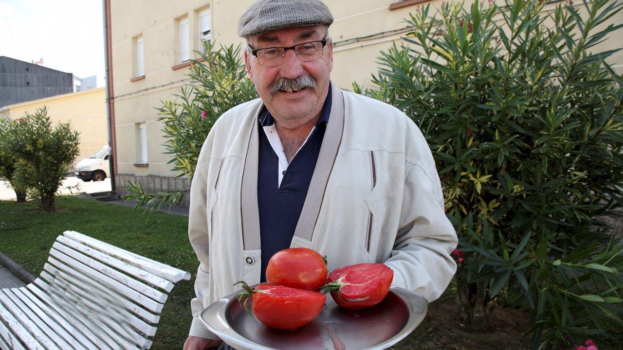 .José Luis muestra los tomates que salvó.