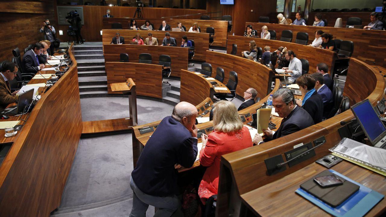 El presidente del Principado, Javier Fernández, atiende a los medios de comunicación.Manifestación en defensa de la oficialidad de la llingua asturiana
