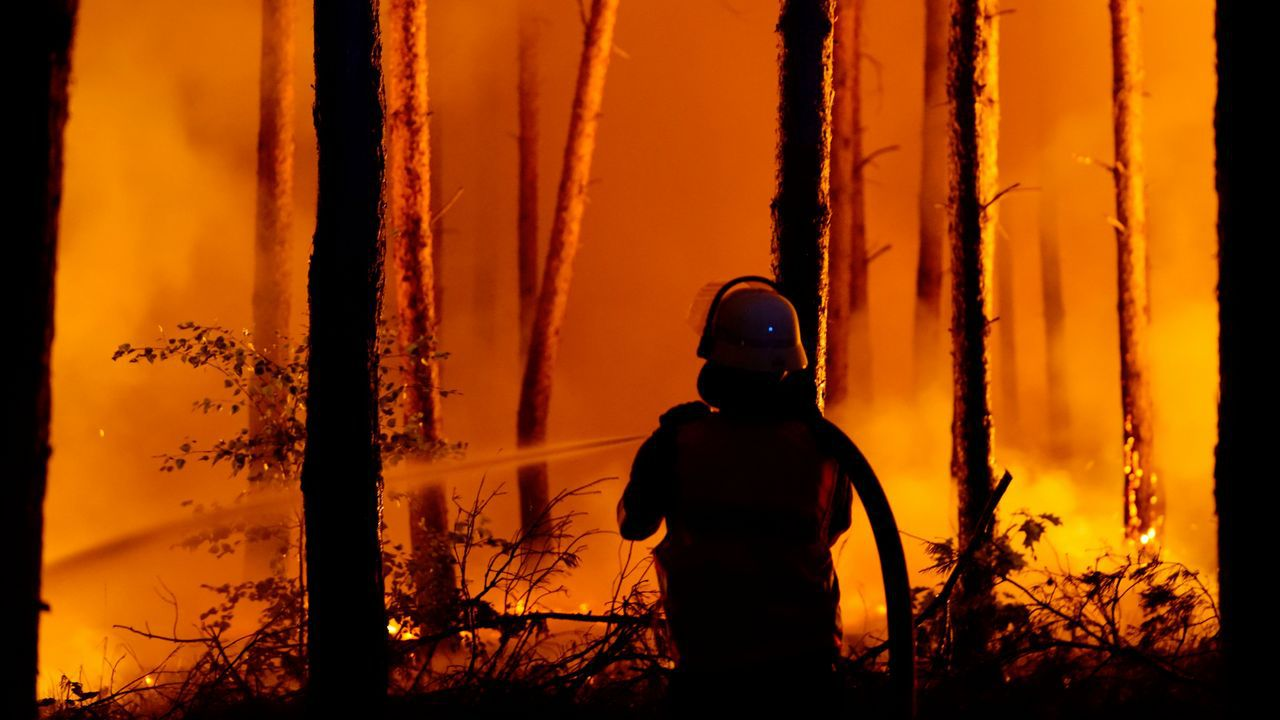 .Bomberos trabajan para apagar un incendio forestal en Alemania.