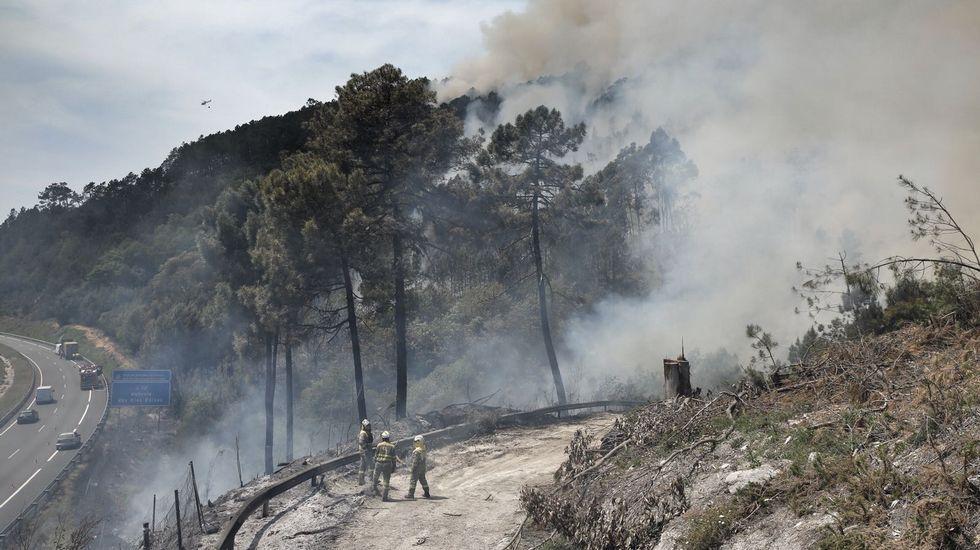 Incendio forestal en el pulmón de Cenlle