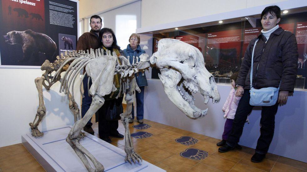 Visitantes ante la réplica de un esqueleto de oso de las cavernas en el museo geológico de Quiroga, uno de los lugares donde se desarrollarán las actividades del programa Observer