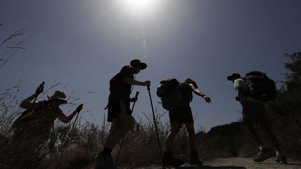 Peregrinos realizando el Camino de Santiago a la altura de la localidad navarra de Zabaldika