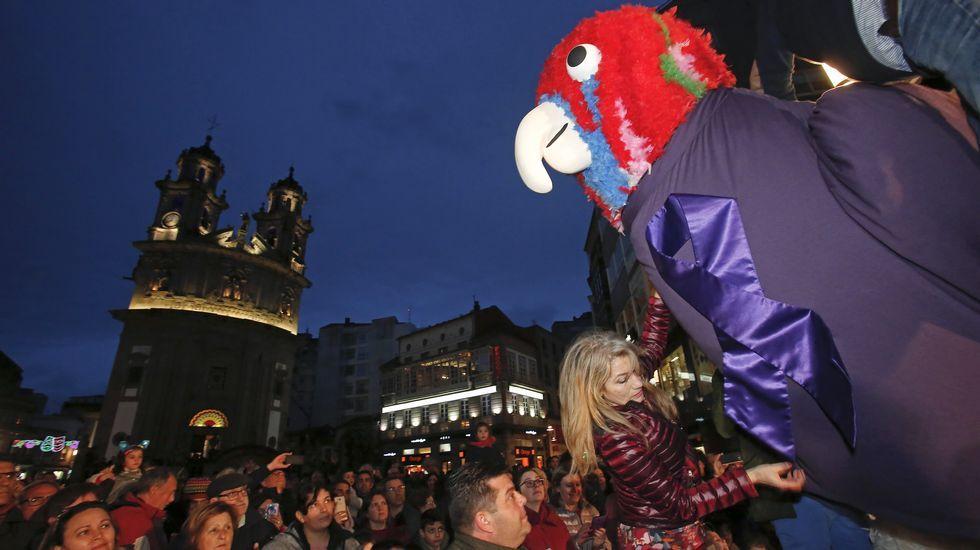 Carnaval de Pontevedra. Presentación del loro Ravachol
