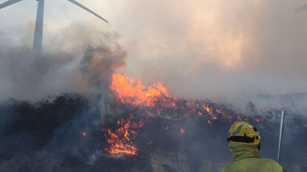 «La situación ahora es de calma tensa».Incendio forestal en Coaxe