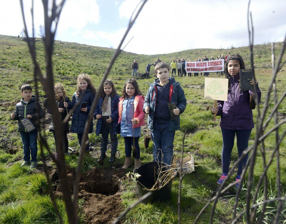 Los niños plantaron árboles en Lucenza.