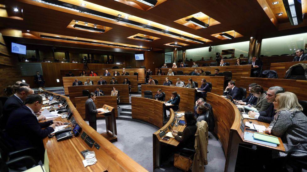 La cara B de la toma de posesión.Mercedes Fernández (PP) durante su turno de intervención en el debate del estado de la región