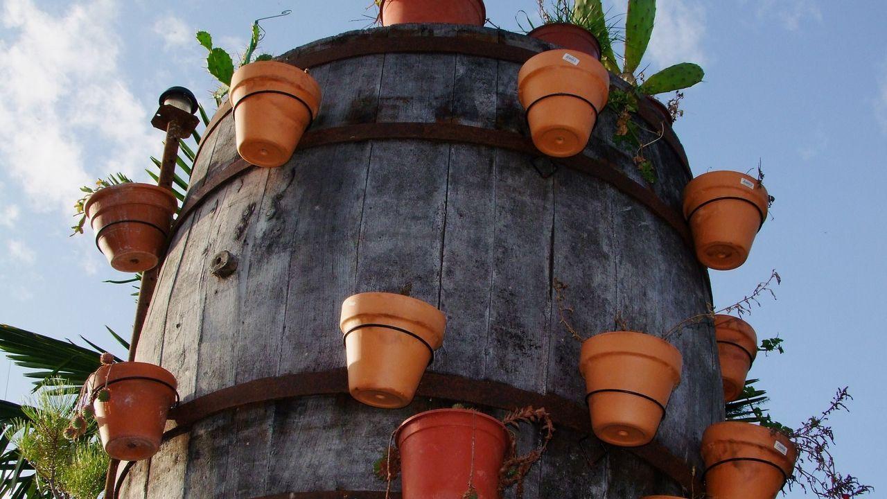 En la la aldea de Portobrosmos -parroquia de Pinol, municipio de Sober-, un antiguo tonel sirve como macetero