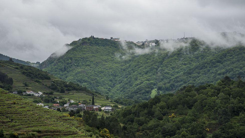 Las fotos de la ruta entre A Portela y Abeleda.Castillete del pozo Maria Luisa