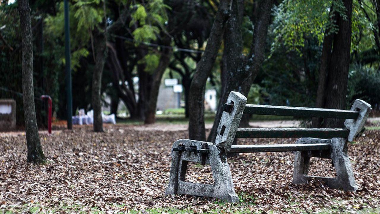 Banco parque soledad.Marisa Ponga, concejala de Igualdad del Ayuntamiento de Oviedo
