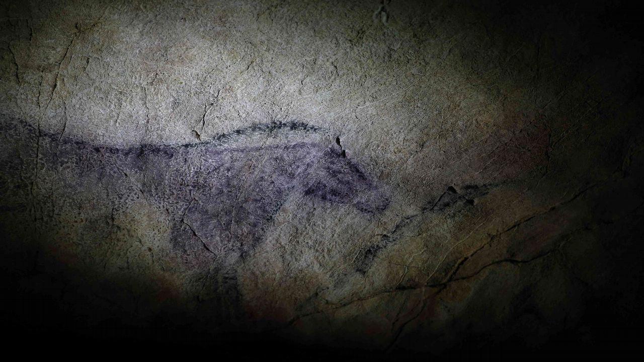 La cueva de Tito Bustillo, ubicada en el concejo asturiano de Ribadesella, considerada uno de los referentes mundiales de arte rupestre y catalogada como Patrimonio de la Humanidad, conmemora este mes el 50 aniversario de su descubrimiento. La caverna conserva doce conjuntos artísticos que hoy se interpretan como uno solo y en el que se diferencian dos etapas: una premagdaleniense, que comprende los conjuntos localizados en la galería larga junto con las primeras fases del panel principal, y otra magdaleniense, a la que pertenecen los conjuntos próximos a la entrada original y las últimas fases del panel principal