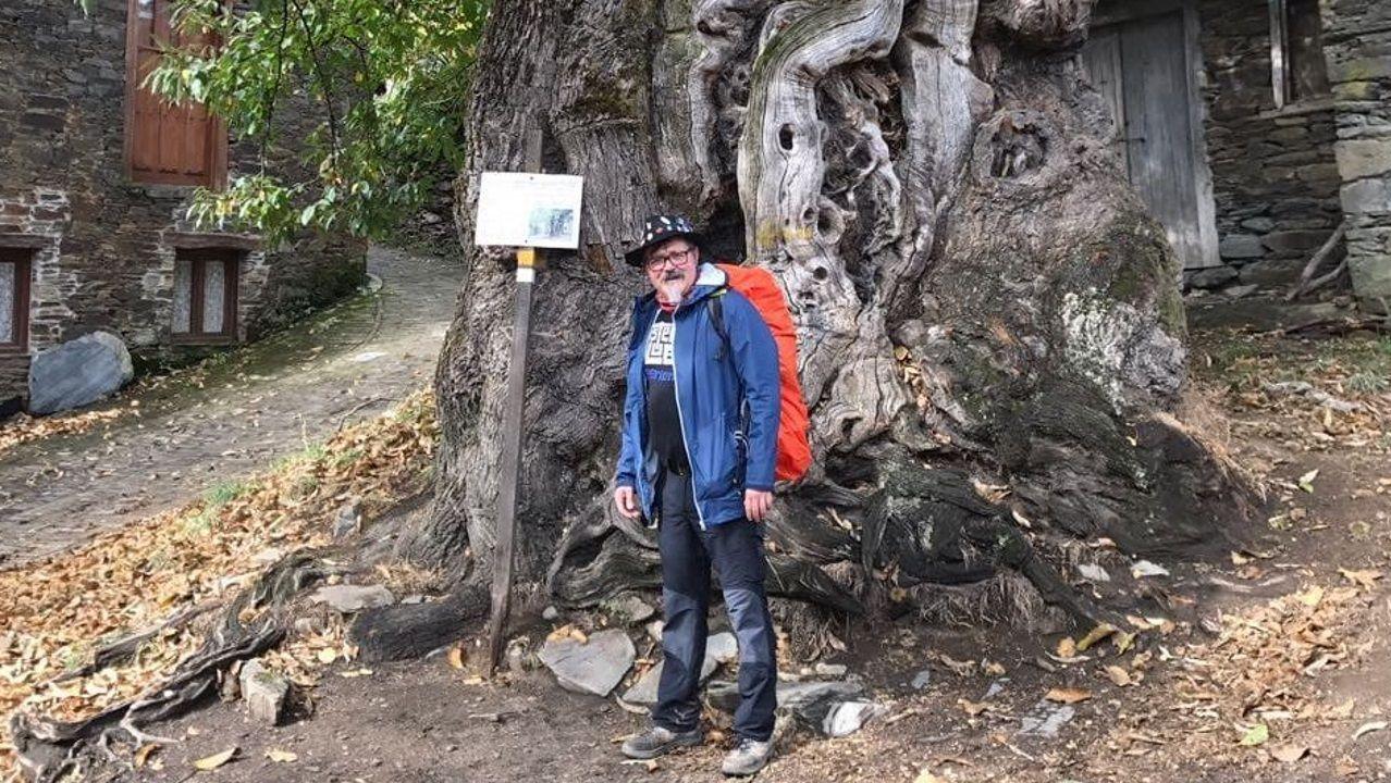 Voz Natura, agentes forestales y alumnado: ¡reforestación en Fisterra!