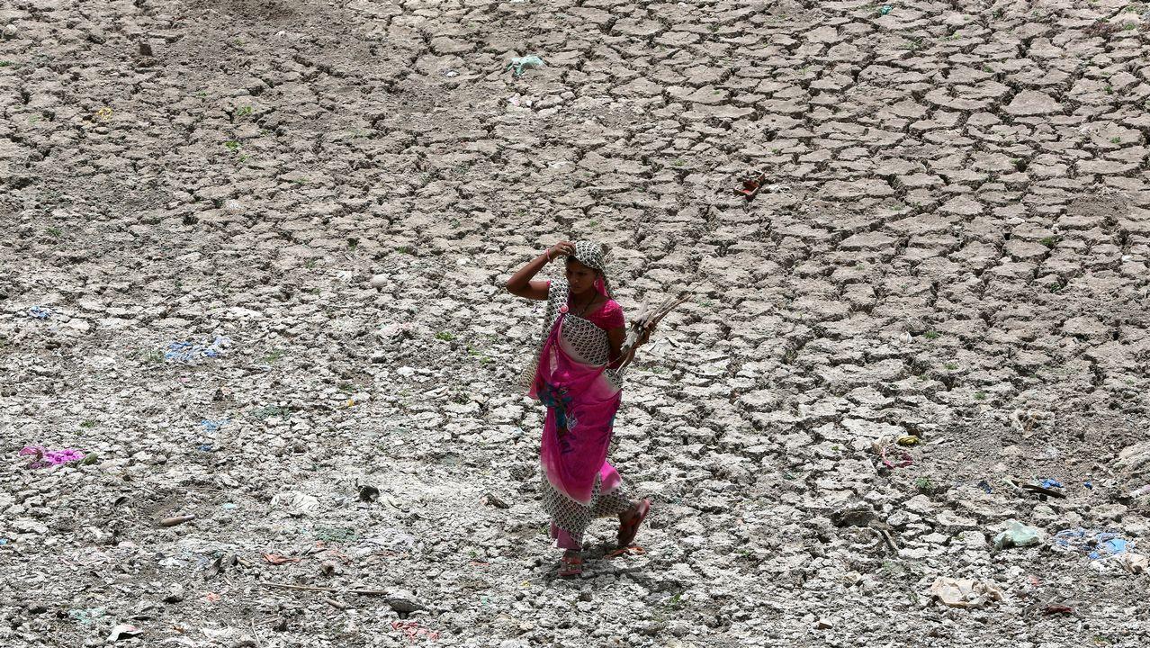 Una mujer transporta leña a través de la cuenca seca del río Sabarmati, en Ahmedabad (India)